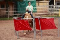 Freestyle Horse Agility_3